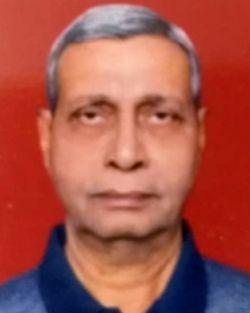 N K  Sinha