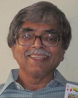 Aniruddha P Sanzgiri