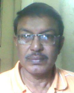 Debashis Bhadra